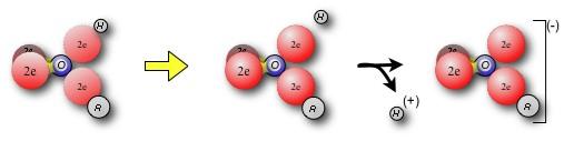 wpid-ZZ3A8510D1-2012-02-13-17-55.jpg